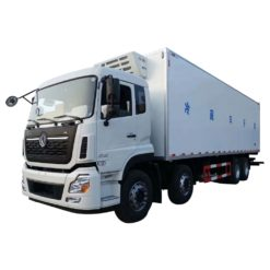 Dongfeng 25 ton to 30 ton 30ft refrigerated truck