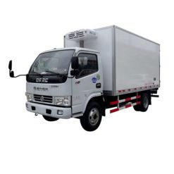Dongfeng 3 ton frozen fish transport truck