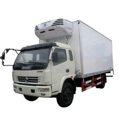 Dongfeng 8 ton 20ft refrigerated truck