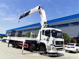 Folding arm truck mounted crane with hydraulic ladder