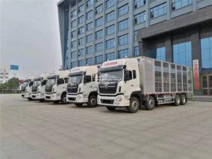 aluminum piggy transport truck