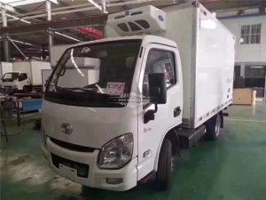 mini freezer truck