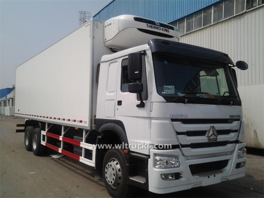 10 wheel 25ft HOWO refrigerated truck